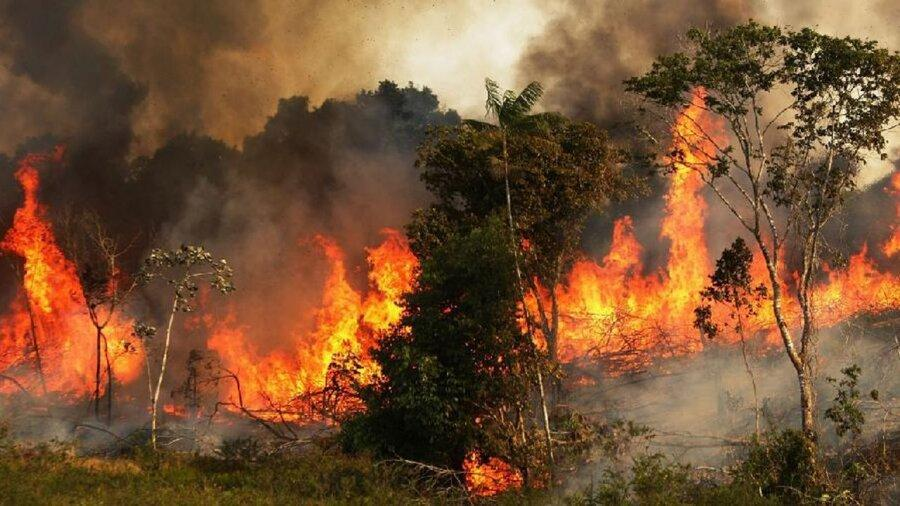 آتش سوزی گسترده در جنگل های پاوه